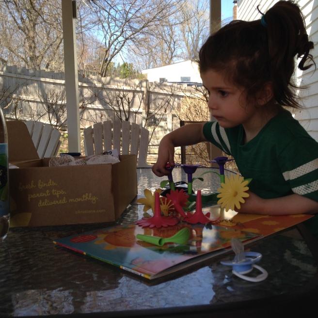 Zoe & Citrus Lane Box